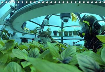 Pěstování Rostlin Pod vodou?